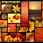 Orange-Collage-spg