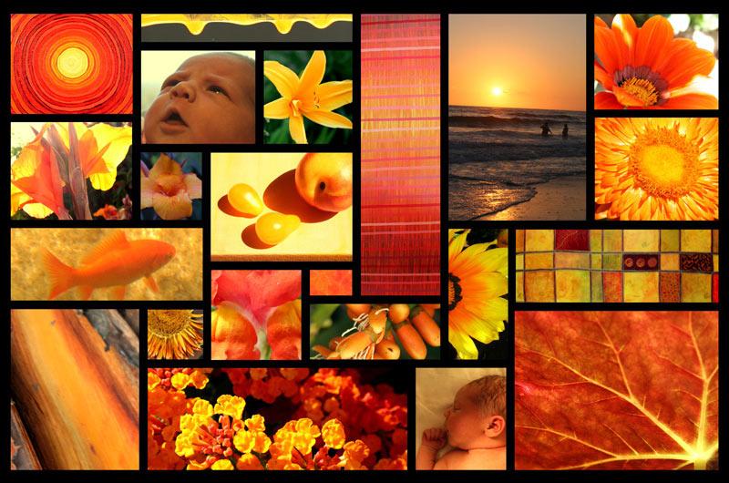 Orange-Collage-spg