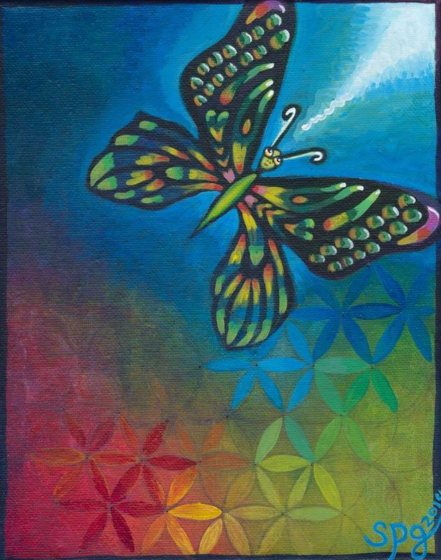 butterfly_spg